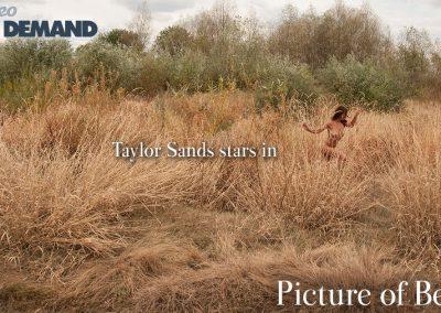 Taylor Grass